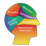 Emotional Intelligence: Just As Important For the Advisor as the Client